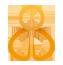 Strategic Prayer Initiative Logo